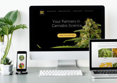 Site redesign for research laboratory